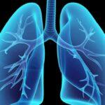 Especialistas debatem presente e futuro dos cuidados respiratórios domiciliários em Portugal
